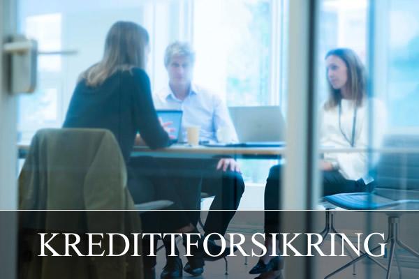Forsikring - Kredittforsikring
